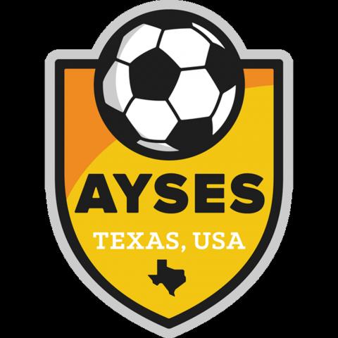AYSES 2012B Gold