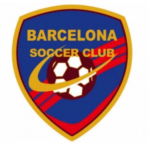 Santos FC Academy / Barcelona