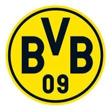 BVB 2014G Black