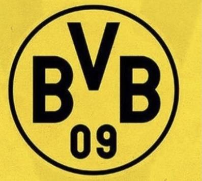 BVB 06 DPL